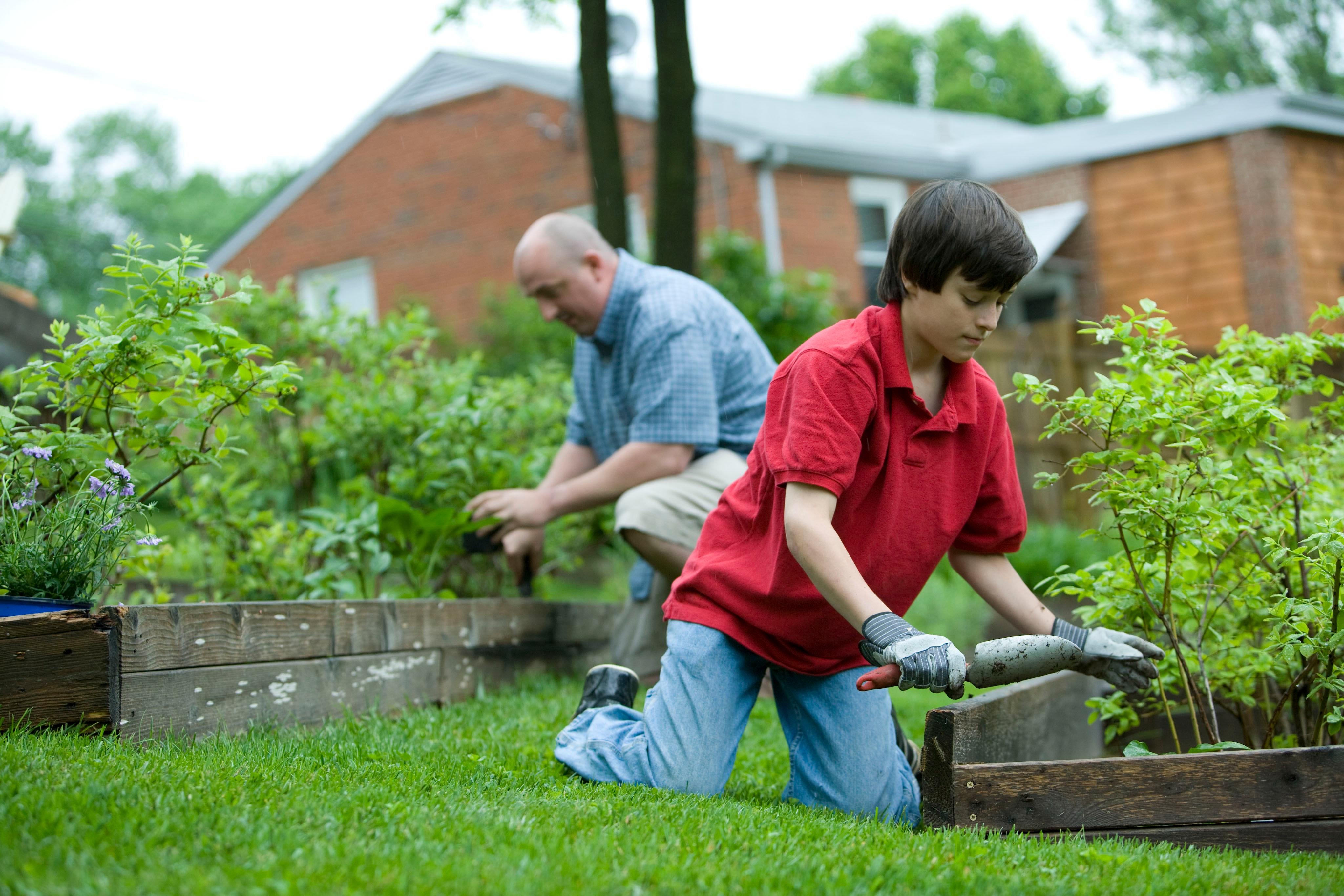father son - gardening