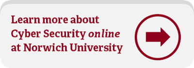 bachelor's in cyber security online