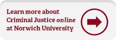 online criminal justice degree